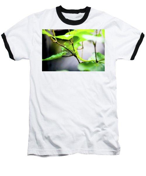 New Zealand Lizard Baseball T-Shirt