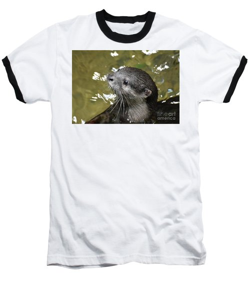 North American River Otter Swimming In A River Baseball T-Shirt