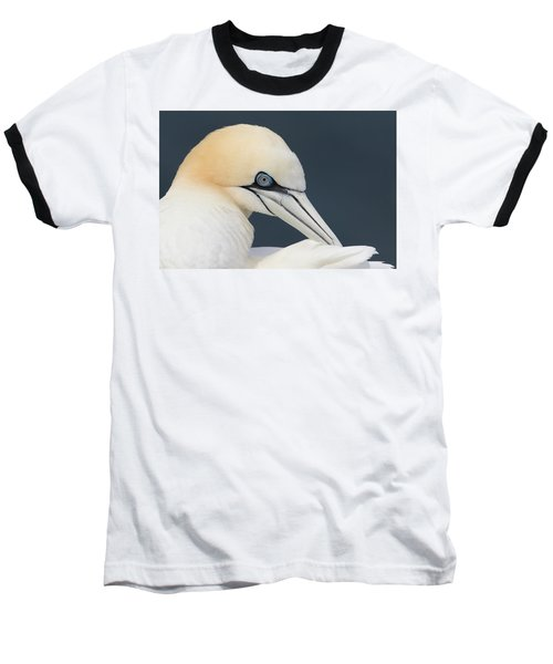 Northern Gannet At Troup Head - Scotland Baseball T-Shirt
