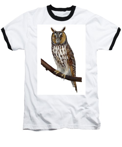 Northern Long-eared Owl Asio Otus - Hibou Moyen-duc - Buho Chico - Hornuggla - Nationalpark Eifel Baseball T-Shirt
