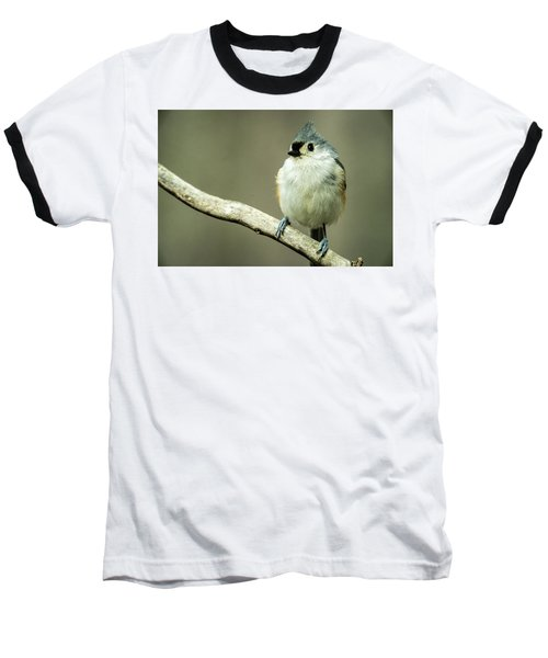 Titmouse Thinking About Weighty Matters Baseball T-Shirt
