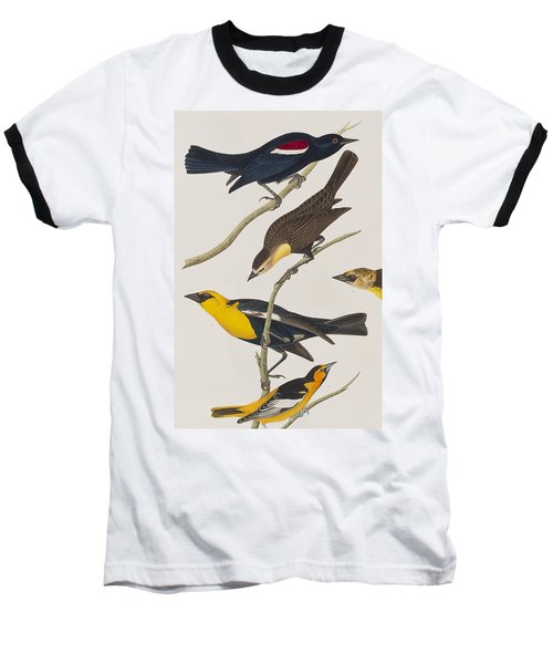 Nuttall's Starling Yellow-headed Troopial Bullock's Oriole Baseball T-Shirt
