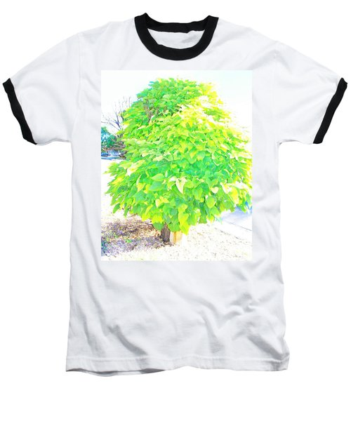 Baseball T-Shirt featuring the photograph Obese American Tree by Lenore Senior