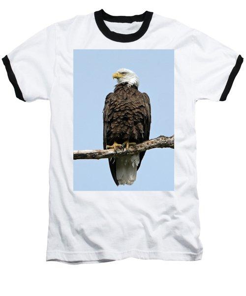 Observant Sentry Baseball T-Shirt