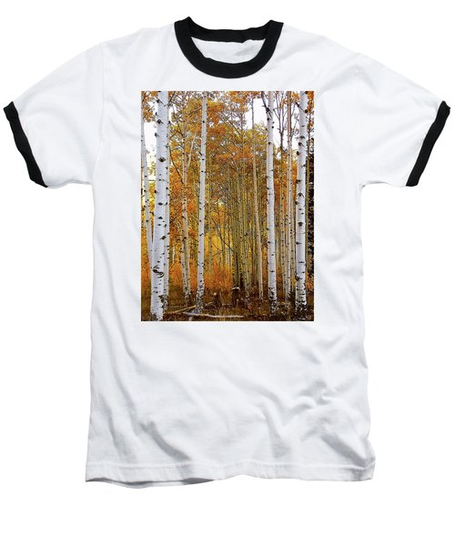 October Aspen Grove  Baseball T-Shirt