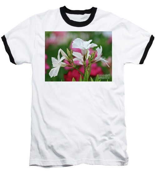 Oleander Casablanca 1 Baseball T-Shirt