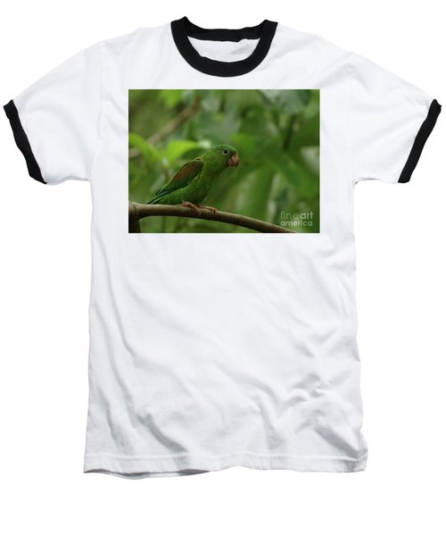 Orange-chinned Parakeet  Baseball T-Shirt