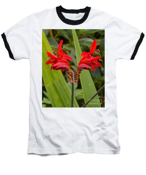 Oregon Flower 1 Baseball T-Shirt