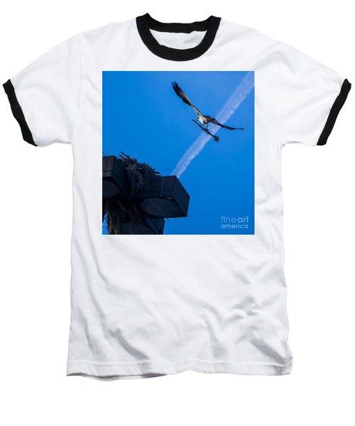 Osprey Carrying Stick To Nest Baseball T-Shirt