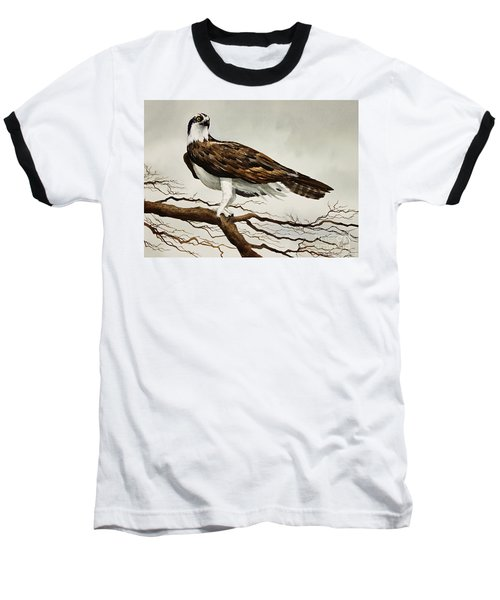 Osprey Sea Hawk Baseball T-Shirt by James Williamson