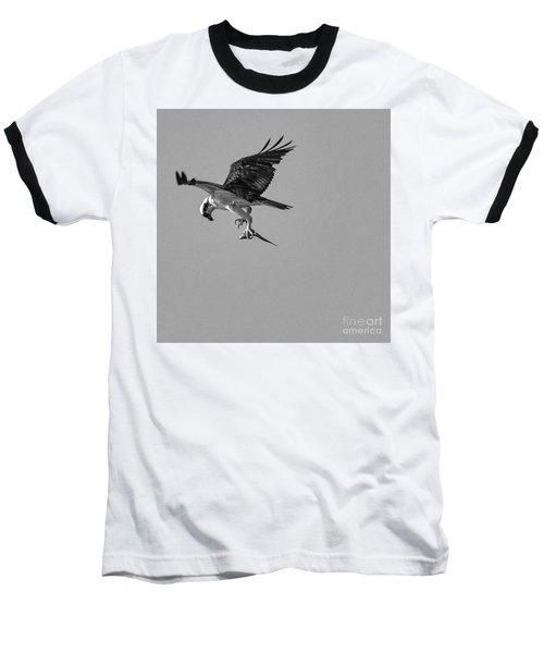 Osprey With Prey Baseball T-Shirt