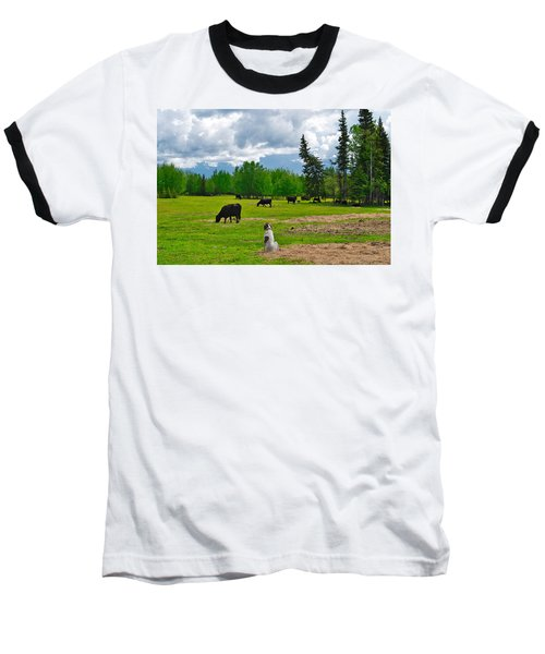 Out In The Pasture Baseball T-Shirt