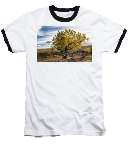 Painted By Nature Baseball T-Shirt by Alana Thrower