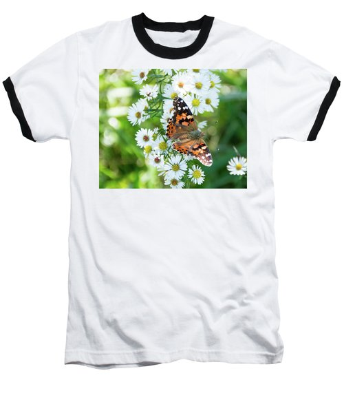 Painted Lady Butterfly Baseball T-Shirt