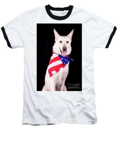Patriotic Dog Baseball T-Shirt by Stephanie Hayes