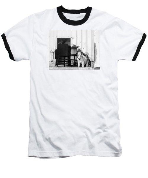 Peak-a-boo Calf Baseball T-Shirt