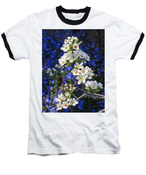 Pear Blossoms And Georgia Blue 2 Baseball T-Shirt by Brooks Garten Hauschild