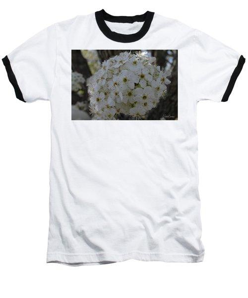 Pear Blossoms Baseball T-Shirt