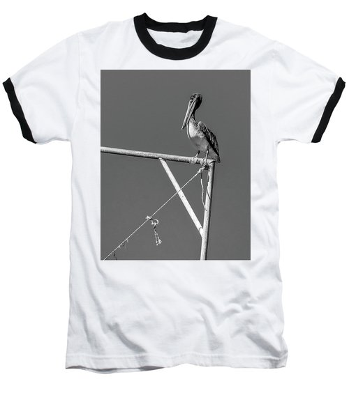 Pelican In Black And White Baseball T-Shirt