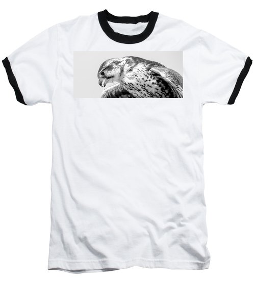 Peregrine Falcon In Black And White Baseball T-Shirt