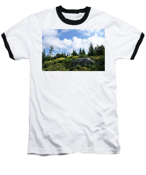 Pines At The Top Baseball T-Shirt by Lois Lepisto