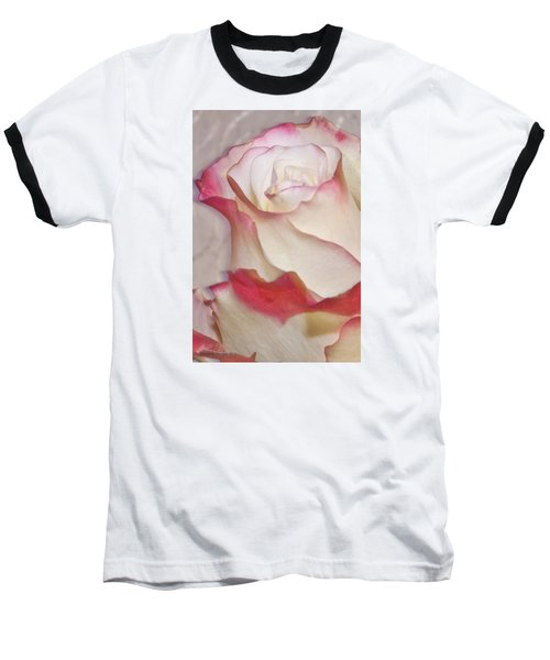 Pink And White Rose Baseball T-Shirt by Sandra Foster