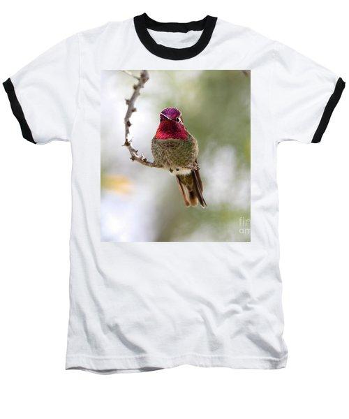 Pink Anna's Hummingbird Baseball T-Shirt