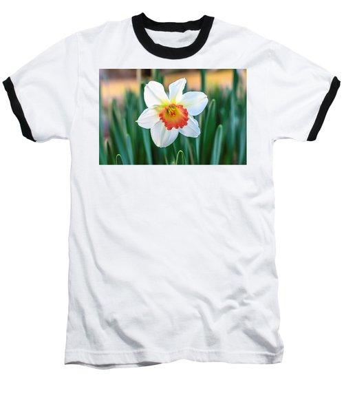 Pink Cup Solo Daffodil Baseball T-Shirt