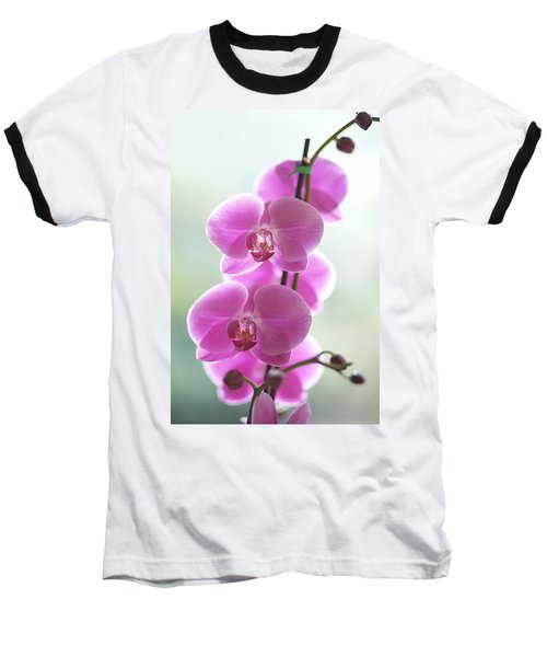 Pink Orchids Baseball T-Shirt