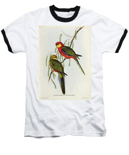 Platycercus Icterotis Baseball T-Shirt