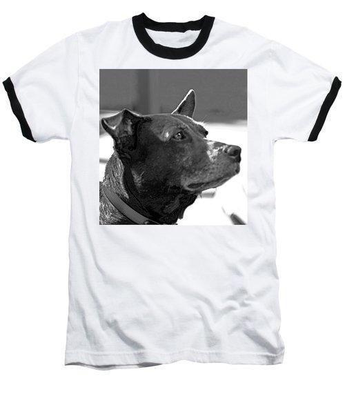 Please? Baseball T-Shirt