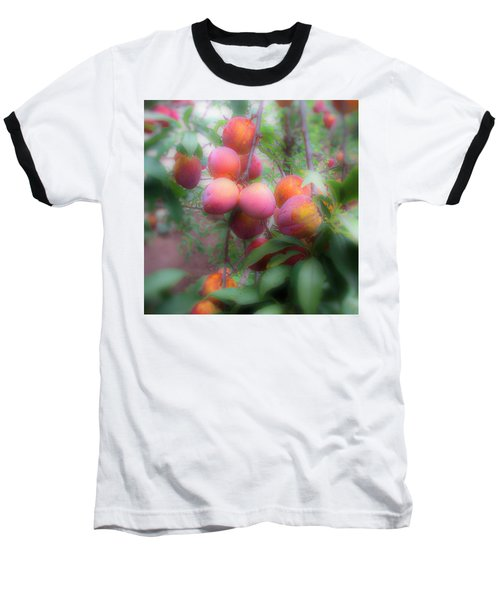 Plum Delight Baseball T-Shirt