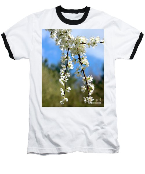 Plum Tree Blossoms Baseball T-Shirt by Baggieoldboy