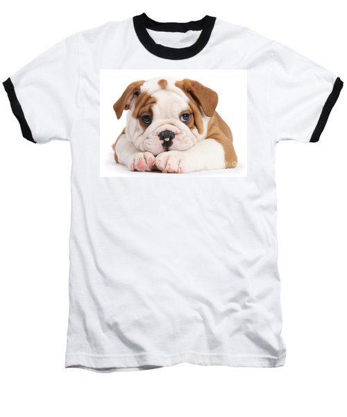Po-faced Bulldog Baseball T-Shirt