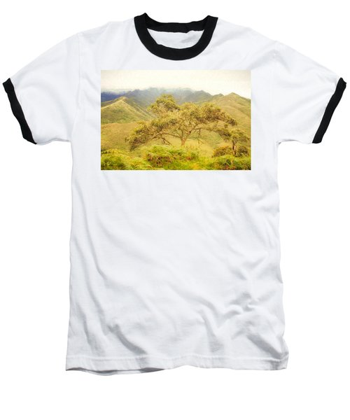 Podocarpus Tree Baseball T-Shirt