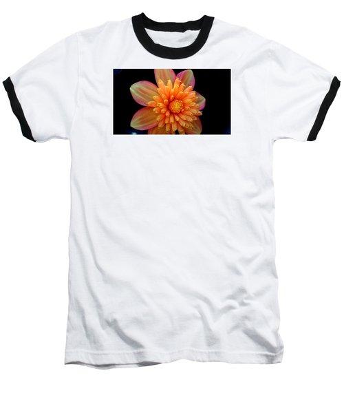 Point Defiance Dahlia Baseball T-Shirt by Karen Molenaar Terrell