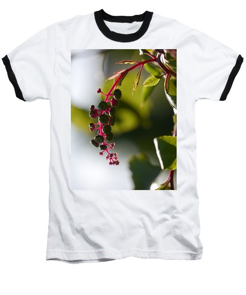 Poke Sallet Anyone? Baseball T-Shirt by Jane Ford