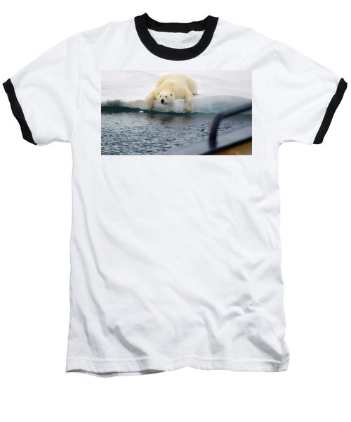 Polar Bear Says 'huh' Baseball T-Shirt