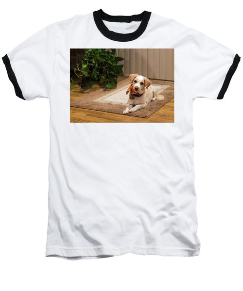 Portrait Of A Dog Baseball T-Shirt