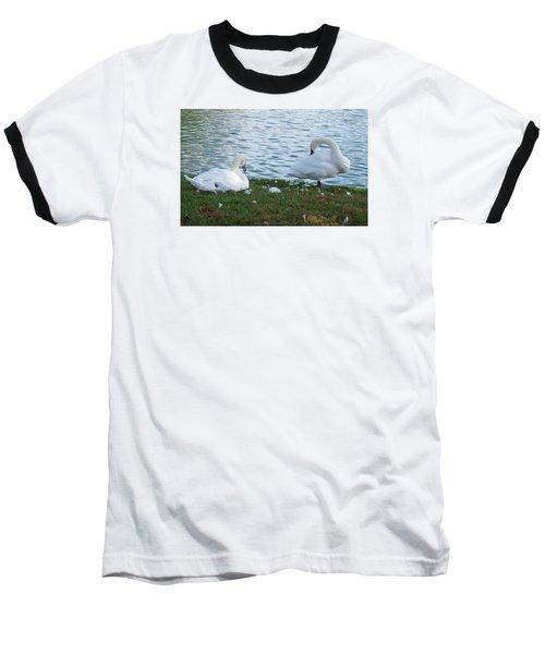 Preening Swans Baseball T-Shirt by Cathy Donohoue