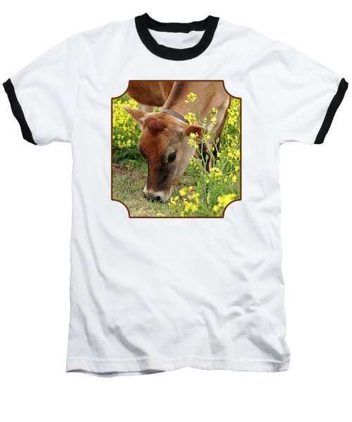 Pretty Jersey Cow Square Baseball T-Shirt by Gill Billington