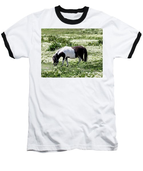 Pretty Painted Pony Baseball T-Shirt by James BO Insogna