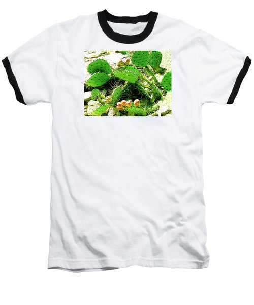 Prickly Pear Cactus Fruit Baseball T-Shirt by Merton Allen
