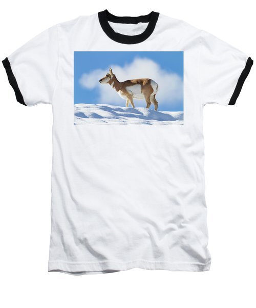 Pronghorn Doe On Snowy Ridge Baseball T-Shirt