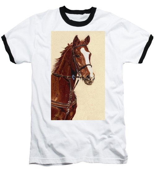 Proud - Portrait Of A Thoroughbred Horse Baseball T-Shirt by Patricia Barmatz