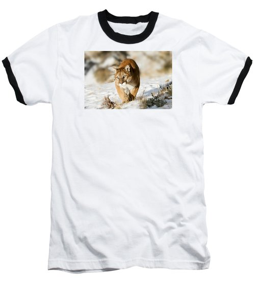 Prowling Mountain Lion Baseball T-Shirt