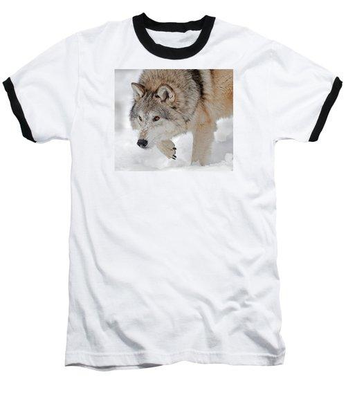 Prowling Wolf Baseball T-Shirt