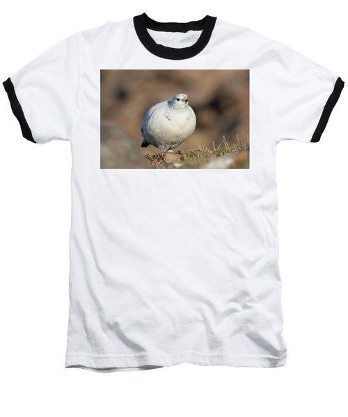 Ptarmigan Going For A Stroll Baseball T-Shirt