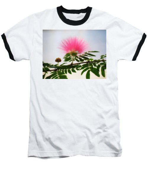 Puff Of Pink - Mimosa Flower Baseball T-Shirt by MTBobbins Photography