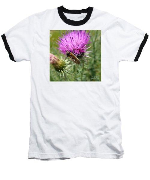Purple Dandelions 1 Baseball T-Shirt